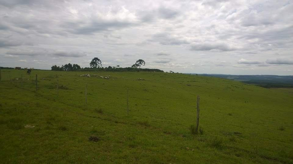 Área Rural na localidade de Azulega
