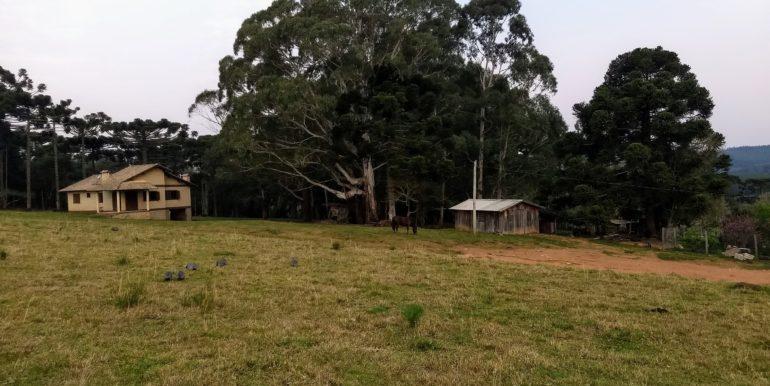 área 13